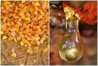Bosvelijų ( Frankincense ) etrinis aliejus. 5 ml